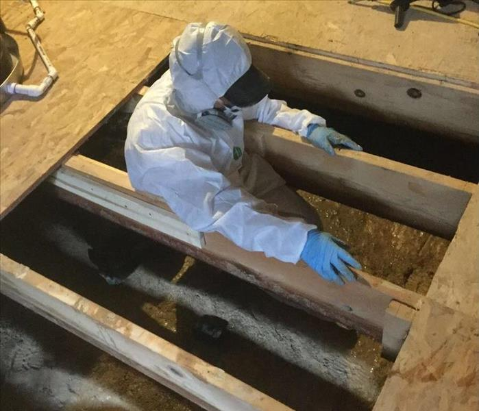 Crawlspace Mold in Aurora, CO